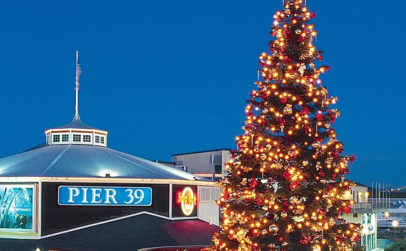 Weekend Picks: Holiday Ice Fun, San Francisco Tree Lighting, and Thanksgiving Farmers Market