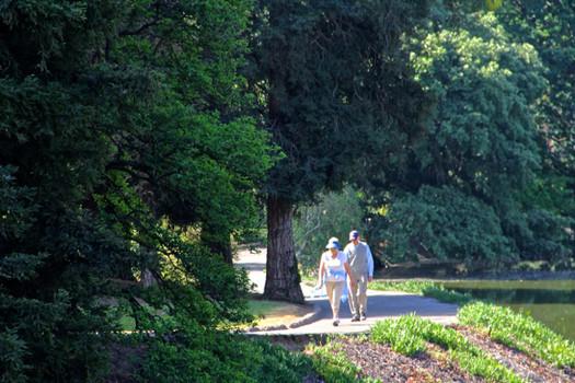 davis arboretum 1
