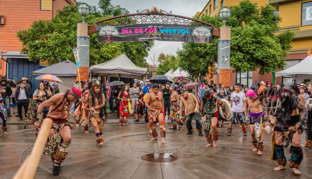 November Picks: Día de Los Muertos Festivals in Sacramento & Oakland, SF Big Book Sale, Suisun Wildlife Center Open House, Topgolf Crush, and SJ Harvest Festival