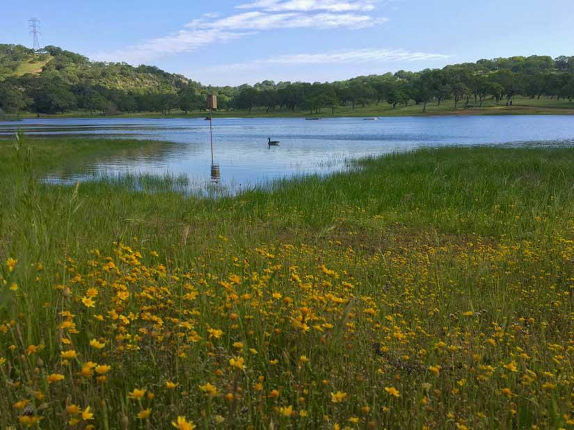 Rockville Hills Regional Park Fairfield